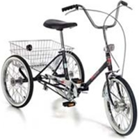 Worksman Deluxe 3 Sd Folding Port O Trike Tricycle